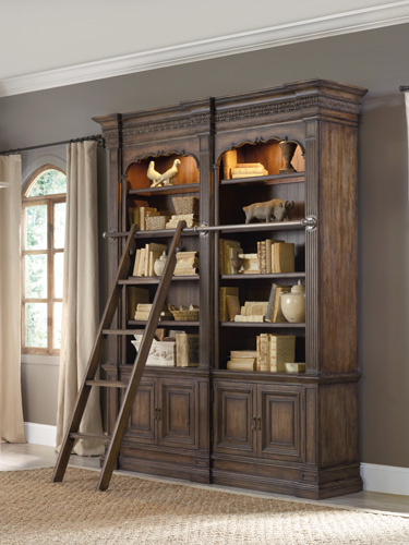 Double bookcase & ladder