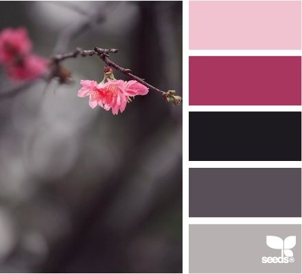 Grays & pinks are vibrant combination