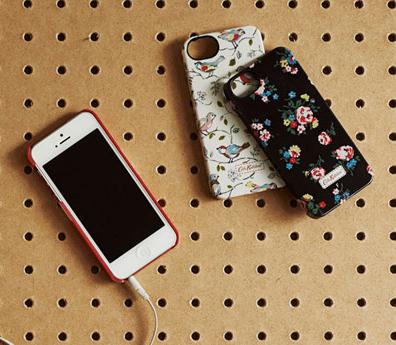 Kew Spring iPhone 5 case