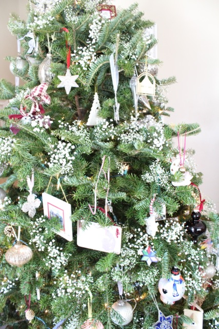 Close up of the tree