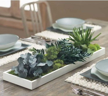 Small plant assortment gives a special touch