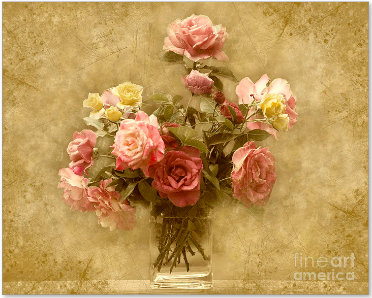 Rose print on canvas from Cheryl Davis