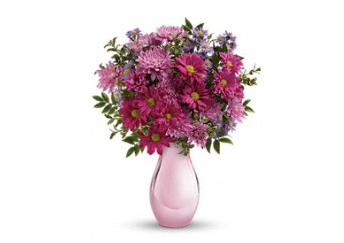 Asters & mums aren't just for fall. These asters and daisy-shaped mums in luscious pinks are all about spring.